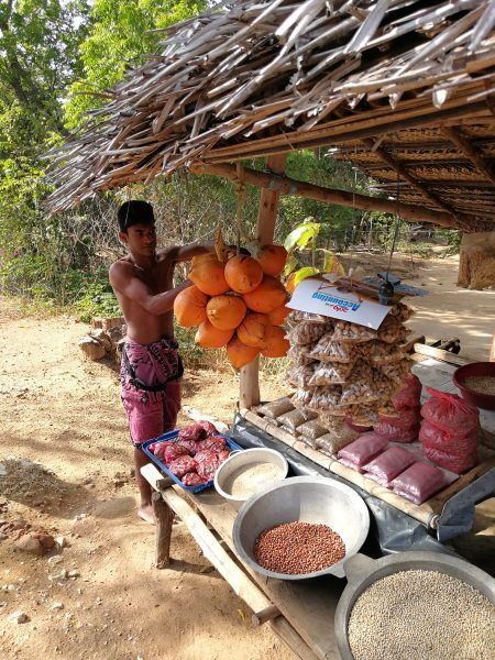 A roadside stall selling King Coconuts