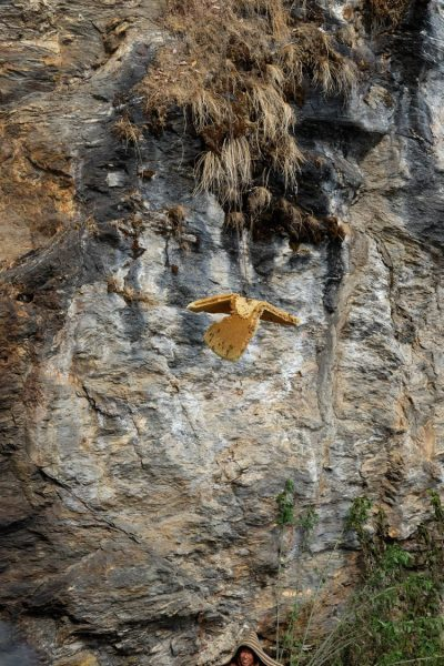 6-honey-hunting-himalayas-mountain-honeycomb