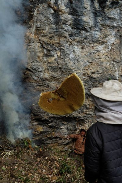 8-honey-hunting-himalayas-mountain-honeycomb