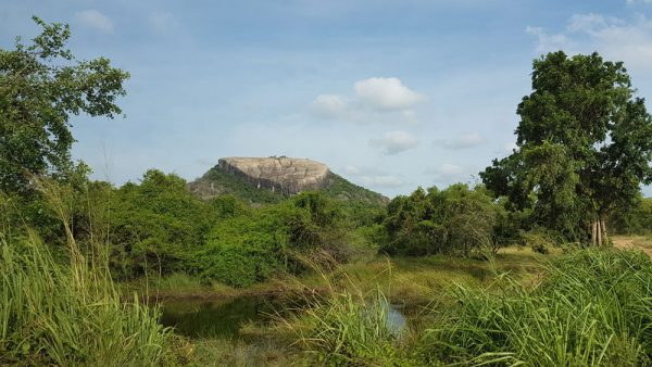 View of the Pidurangala Rock