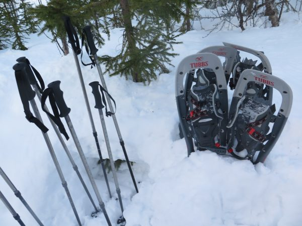 Snowshoe equipment