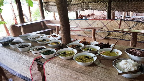 Buffet lunch spread at a rice padi field
